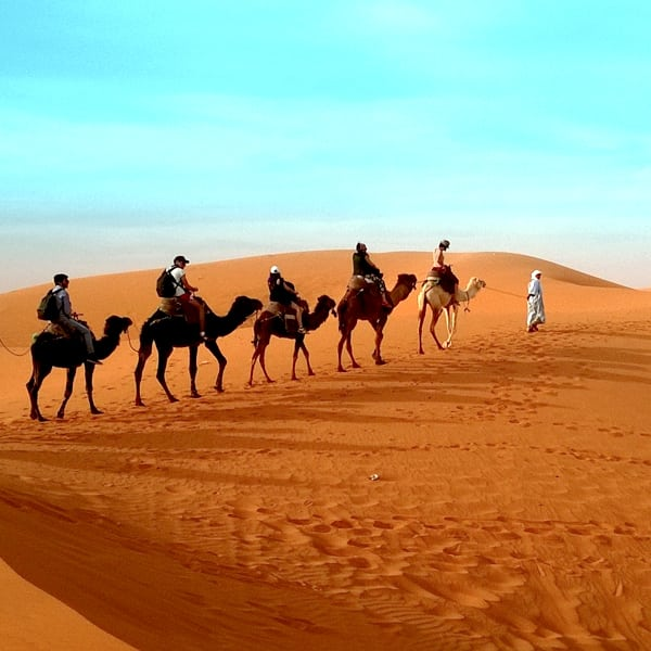 Majestic Morocco FAM with Wanderlust Voyages